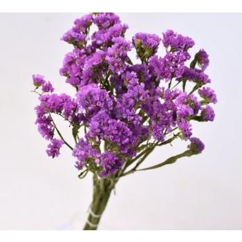 Botte séchée Statice lilas